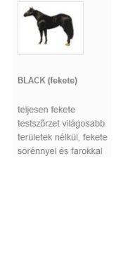 BLACK (fekete)