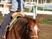 red-horse-ranch-lovastabor6