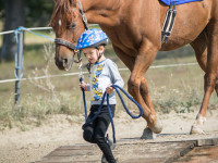 red-horse-ranch-lovasiskola-37