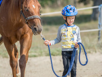 red-horse-ranch-lovasiskola-38
