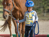 red-horse-ranch-lovasiskola-39