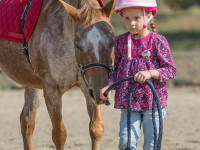 red-horse-ranch-lovasiskola-43