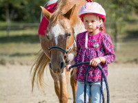 red-horse-ranch-lovasiskola-44