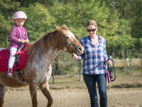 red-horse-ranch-lovasiskola-45