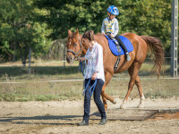 red-horse-ranch-lovasiskola-46