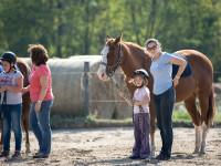 red-horse-ranch-lovasiskola-57