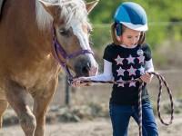 red-horse-ranch-lovasiskola-66