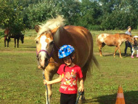 red-horse-ranch-lovasiskola-8