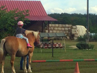 red-horse-ranch-lovasiskola-9