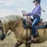 red-horse-ranch-kupa-elmenyel-velemeny