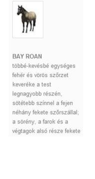 BAY ROAN