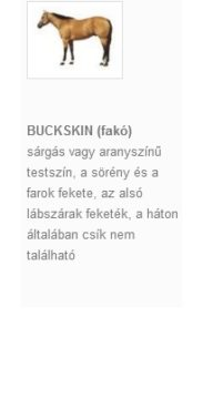 BUCKSKIN (fakó)