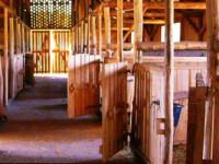 bertartas-red-horse-ranch5