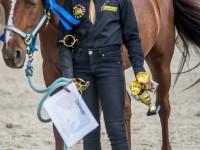 red-horse-ranch-utanpotlas-neveles-16