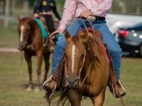 red-horse-ranch-utanpotlas-neveles-7