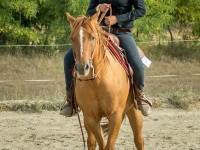 red-horse-ranch-versenyeztetes-13