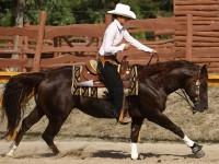 reining-kor