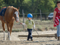 red-horse-ranch-lovasiskola-25