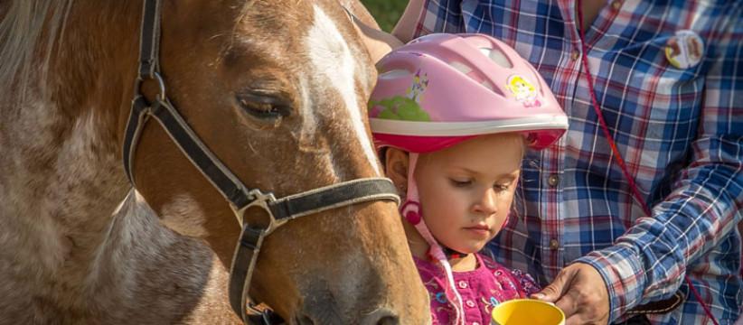 red-horse-ranch-lovasiskola-34