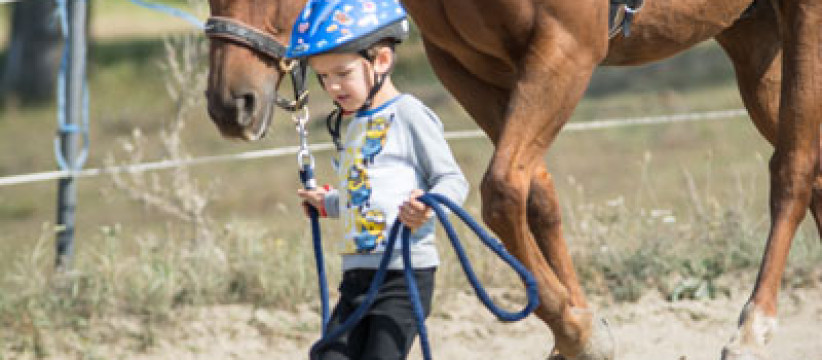 red-horse-ranch-lovasiskola-37