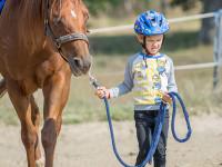red-horse-ranch-lovasiskola-38