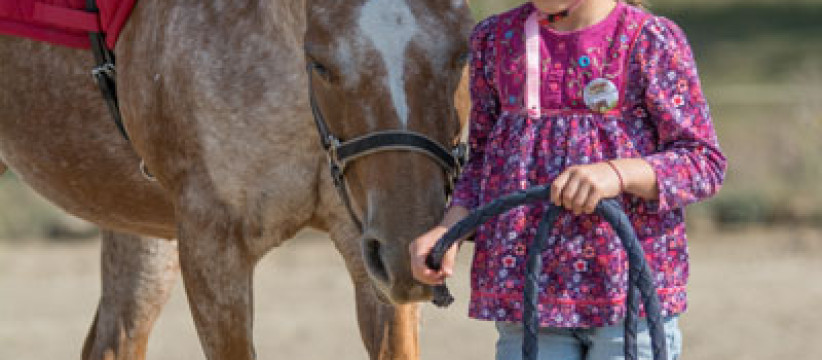 red-horse-ranch-lovasiskola-43