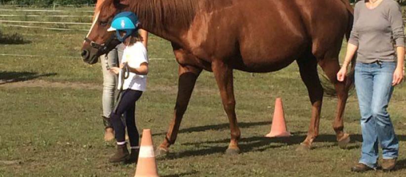 red-horse-ranch-lovasiskola-5