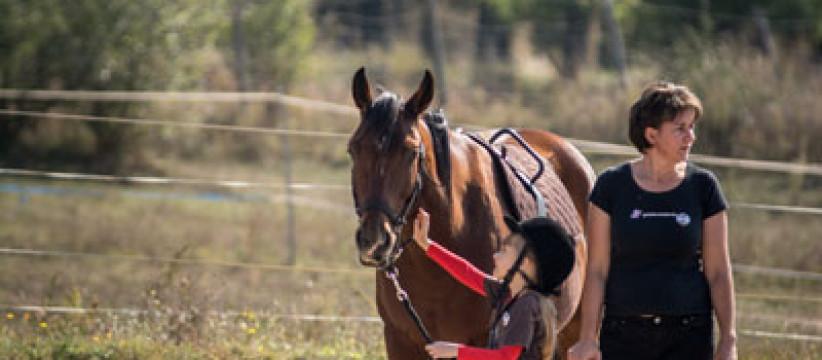 red-horse-ranch-lovasiskola-51