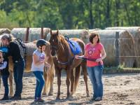 red-horse-ranch-lovasiskola-54