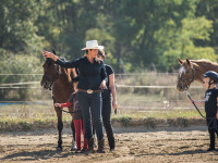 red-horse-ranch-lovasiskola-56