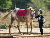 red-horse-ranch-lovasiskola-59
