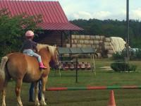 red-horse-ranch-lovasiskola-9